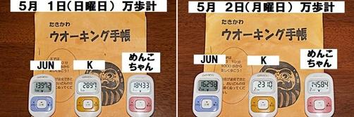 IMG_1791-20110505-tile.jpg