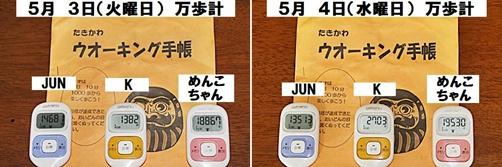 IMG_1839-20110505-tile.jpg