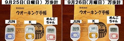 IMG_1956-20110928-tile.jpg