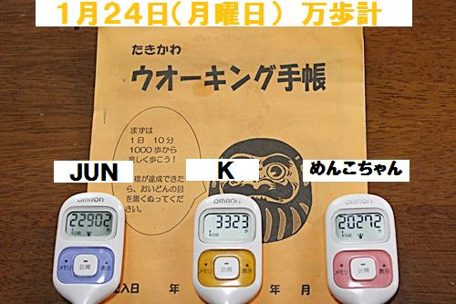 IMG_2086-20110125.jpg