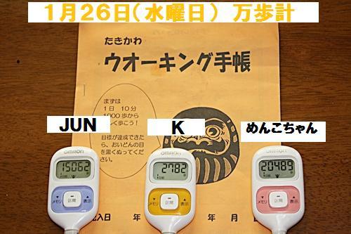 IMG_2235-20110127.jpg