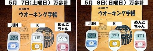 IMG_2300-20110508-tile.jpg