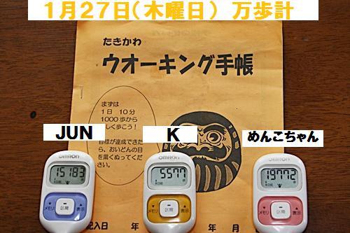 IMG_2338-20110128.jpg