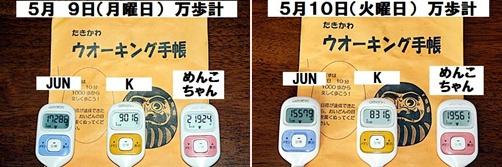 IMG_2398-20110515-tile.jpg