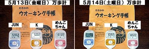 IMG_2500-20110515-tile.jpg