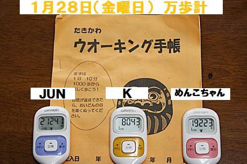 IMG_2508-20110129.jpg