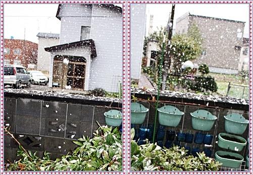 IMG_2517-20111003-tile.jpg