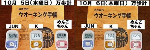 IMG_2631-20111006-tile.jpg