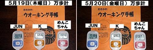 IMG_2813-20110522-tile.jpg