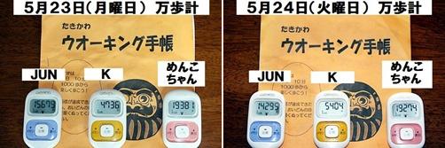IMG_3053-20110524-tile.jpg