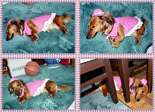 IMG_3285-20110529-tile.jpg