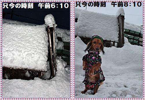 IMG_3288-horz.jpg