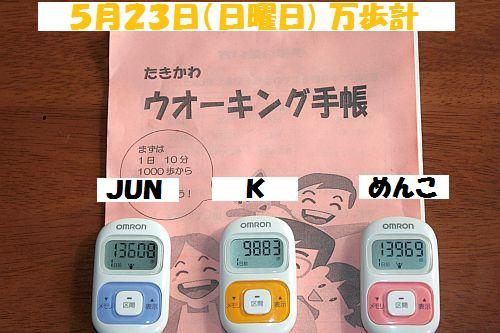 IMG_3525_20100524160746.jpg