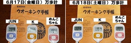 IMG_3998-20110618-tile.jpg