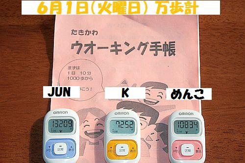 IMG_4450_20100602172152.jpg