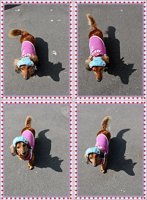 IMG_4715-20110703-tile.jpg