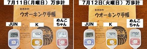IMG_5143-20110713-tile.jpg