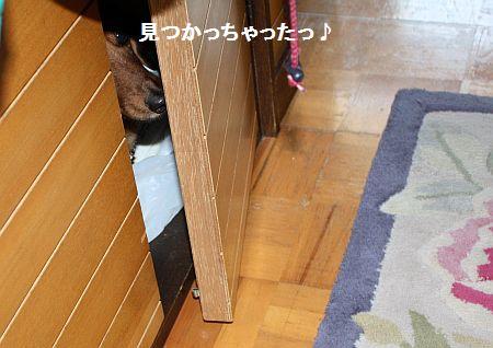 IMG_5178.jpg