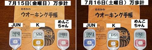 IMG_5301-20110716-tile.jpg