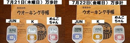 IMG_5539-20110724-tile.jpg