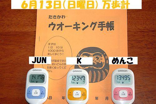 IMG_5566_20100614175643.jpg