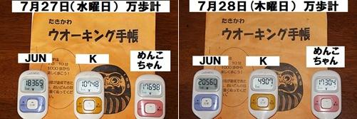 IMG_6050-20110728-tile.jpg