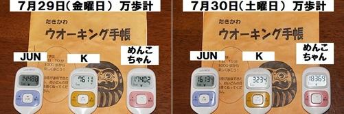IMG_6115-20110731-tile.jpg