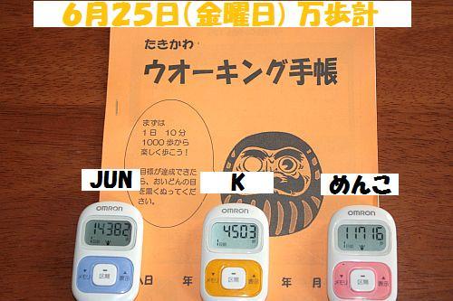 IMG_6270_20100626204730.jpg