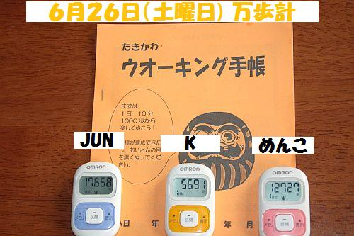 IMG_6329_20100627213221.jpg