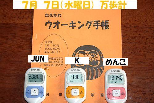 IMG_7230_20100708140429.jpg