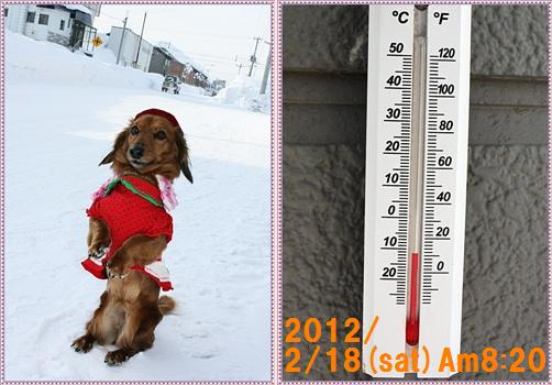 H24/2/18(sat)温度計