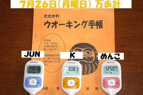 IMG_8268_20100727204606.jpg