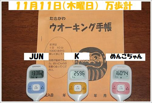 IMG_9666-20101112.jpg