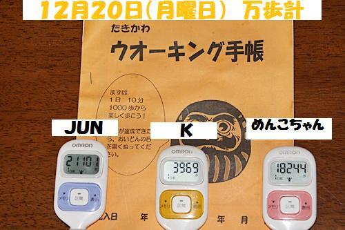 IMG_9708-20101222.jpg