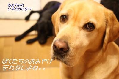 200992mesohamiy.jpg