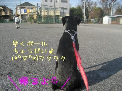 IMG_3639ii.jpg