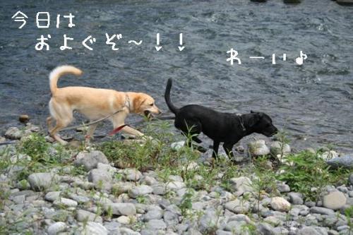 200977kyouhaoyoguzo