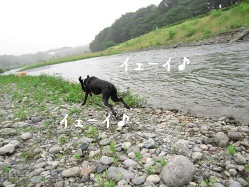 200973kawaasobi1