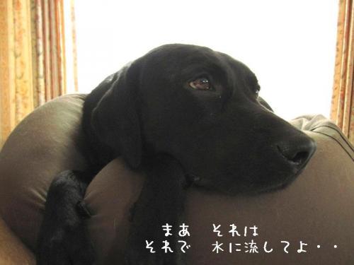200976mizuninagasite