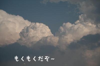 IMG_7778.jpg