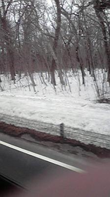 2010.3.25 北海道 036