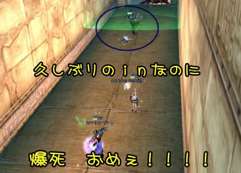 3_20100506092743.jpg