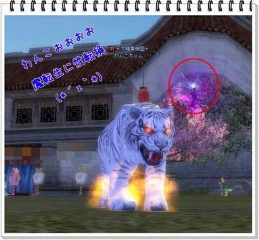 ttt_20110706123527.jpg