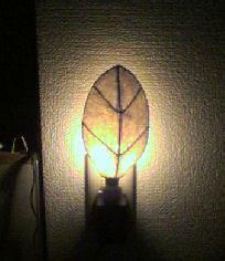 木の葉ライト
