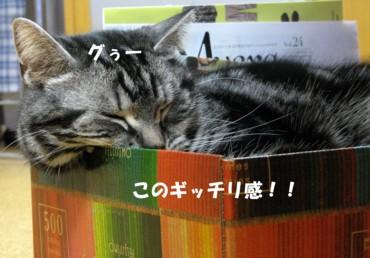 色えんぴつ モモタロ1