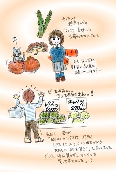満月と野菜