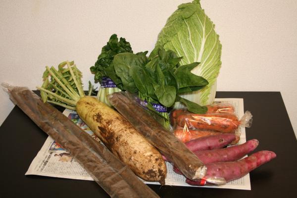 2009-1-18野菜