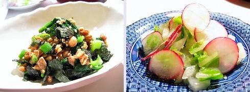 ほうれん草の海苔納豆和え&白菜とラディッシュのゆず胡椒漬け