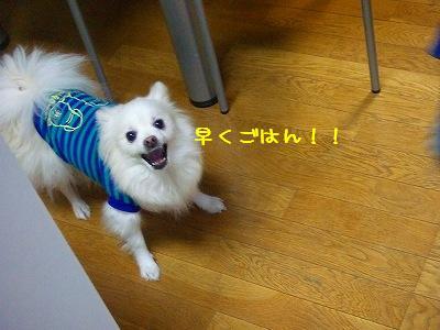 s-DSCF9516.jpg