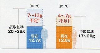 食物繊維の摂取量グラフ
